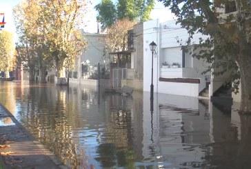 OSE dispuso exoneración para personas afectadas por la creciente. Río Uruguay en 8,35 frente a Paysandú