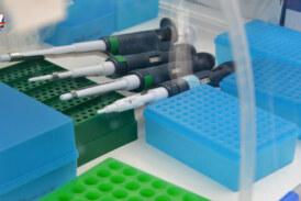 Coronavirus: 89 casos nuevos y 170 personas recuperadas en Paysandú